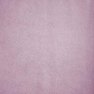 Saga Lilac